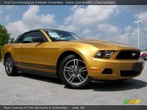 Sunset Gold Metallic - 2010 Ford Mustang V6 Premium Convertible - Charcoal Black Interior ...