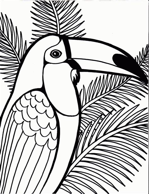 parrot coloring page coloring pages parrot bird coloring pages