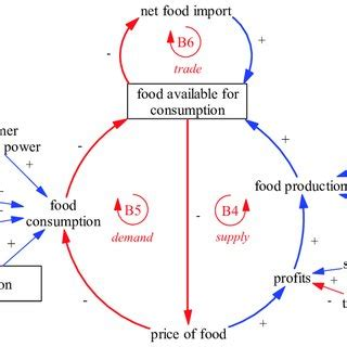 Food Loop Diagram by Causal Loop Diagram Representing Competitive Market