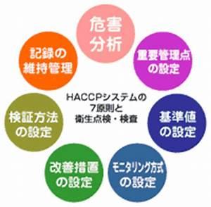 Haccp U30b7 U30b9 U30c6 U30e0