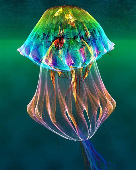 jeux de cuisine en ligne pour fille meduse multicolore