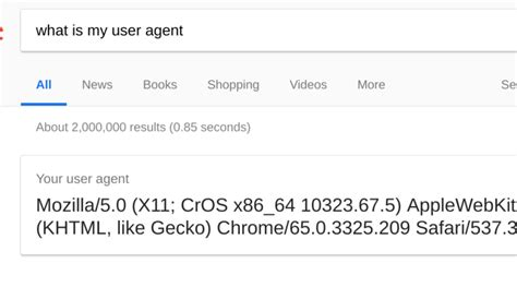 agent user spoof chromebook os chrome support don