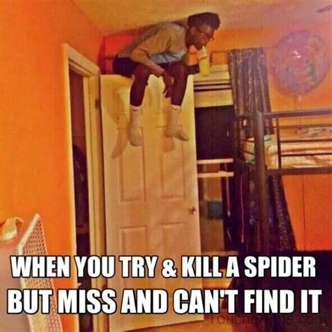 Spider In House Meme - if you can t kill the spider after you tried this is what you do in my head 1 burn the