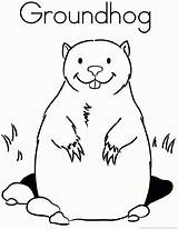 Groundhog Woodchuck Coloring Animal Popular Coloringhome sketch template
