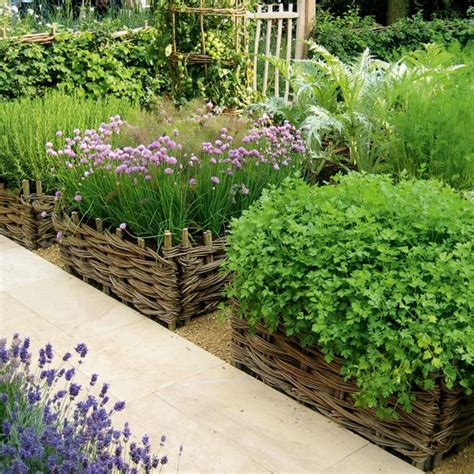 small vegetable garden ideas memes