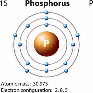 Diagram Representation Of The Element Phosphorus