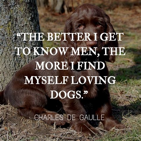 dog quotes  rounded