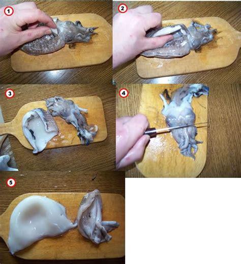 cuisiner tentacules de poulpe astuce sur les calmars seiches poulpes mes