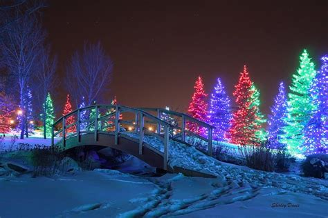 Spruce Meadows Christmas Lights Winter Wonderland
