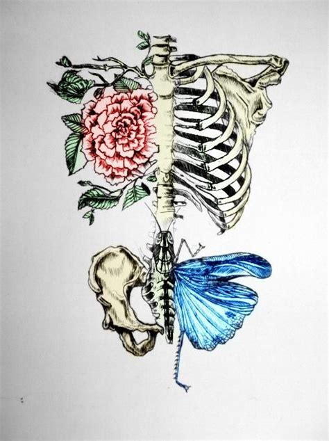 Beauty Drawing Skulls Art Life Happy Perfect Nature Punk