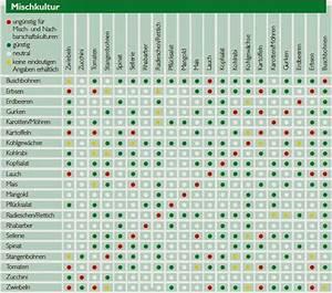 Wann Welches Gemüse Pflanzen Tabelle : wann welches gem se pflanzen tabelle ii61 startupjobsfa ~ Frokenaadalensverden.com Haus und Dekorationen