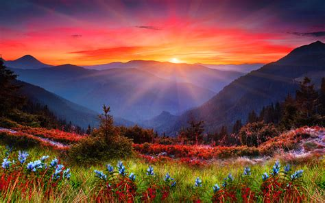 Mountains Background Android Wallpaper Majestic Mountains