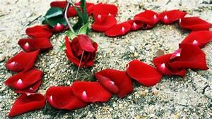 Puer Centrum Annorum  A Red Red Rose