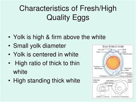characteristics of cuisine ppt foods 1 obj 2 05 understand procedures equipment
