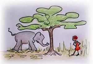 Managing biodiversity: Indigenous knowledge, elephants ...