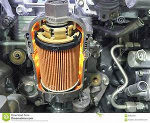 Engine Oil Filter Cross Section   Display Inside Materials  Stock Image