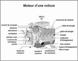 Piece De Voiture : pieces du moteur automobile ~ Medecine-chirurgie-esthetiques.com Avis de Voitures
