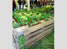 25 DIY Ideas Using Pallets for Raised Garden Beds Snappy