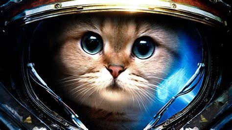 starcraft james raynor astronaut space cat starcraft