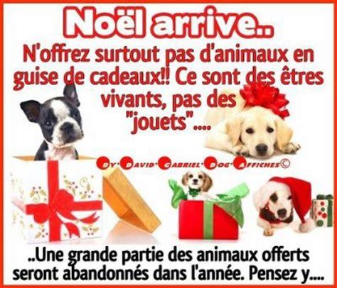 si鑒e auto pour chien non pas d 39 animaux en cadeau pour noel