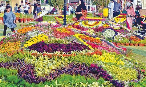 annual flower show opens newspaper dawncom