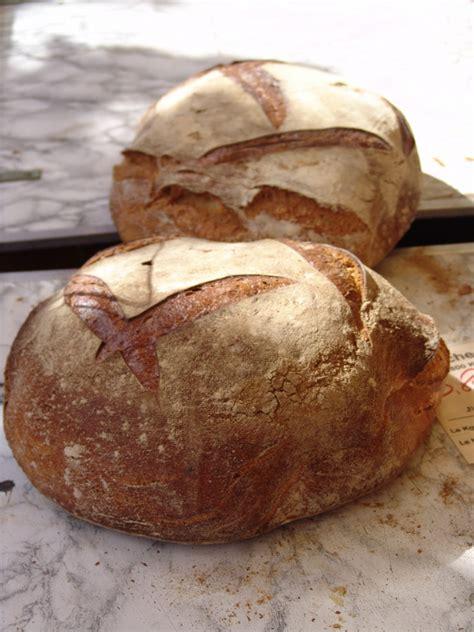 migliore scuola di cucina pagnotta pugliese la ricetta per preparare la pagnotta