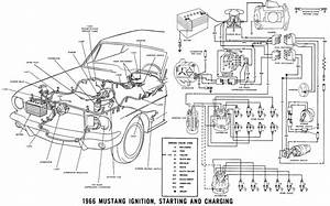 Electrical  Wiring Engine Compartment 1968