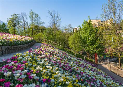 beautiful gardens  italy allora