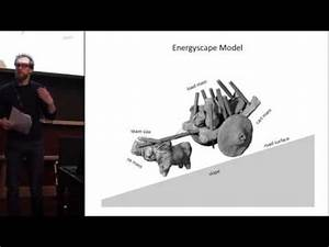 The road not taken: Modelling approaches to transport on ...