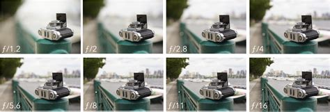 What is Depth of Field (DOF)  Casual Photophile