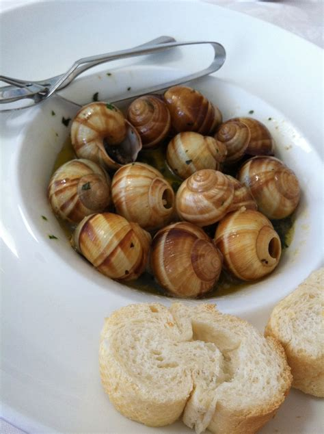 cuisine escargot the snail restaurant sydney
