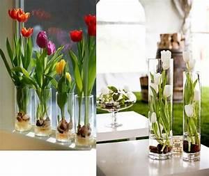 Blumenzwiebeln Im Glas : ideenreiche osterdekoration und fr hlingsinspiration ~ Markanthonyermac.com Haus und Dekorationen