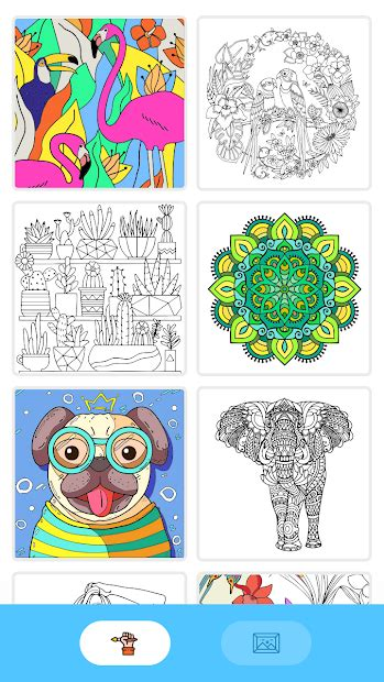 paintly color  number fun coloring art book