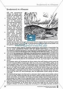 Brudermord Im Altwasser Pdf : kurzgeschichte brudermord im altwasser text aufgaben ~ A.2002-acura-tl-radio.info Haus und Dekorationen
