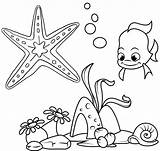 Coloring Starfish Pages Undersea Creature Wow Children These sketch template
