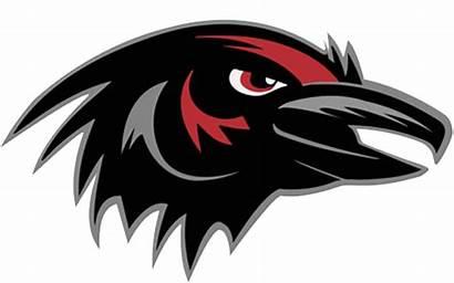 Robbinsville Ravens Mascotdb Jersey Teams Record