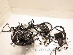 2017 Toyota Highlander Engine Wire Harness