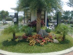 Landscaping Ideas by Palms Landscape Ideas
