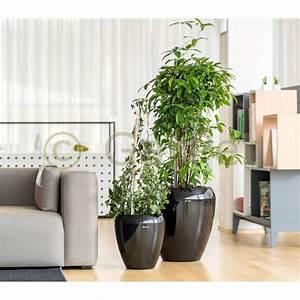 Pflanzkübel Mit Wasserspeicher : pflanzk bel gro calimera blumentopf reddot design award ~ Frokenaadalensverden.com Haus und Dekorationen