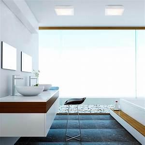 Plafonnier Salle De Bain : plafonnier tola 2 blanc 2xe27 20w luminaire salle de ~ Dailycaller-alerts.com Idées de Décoration