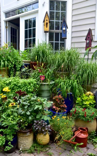 15 Container Ideas And Why I Love Them  Toronto Gardens