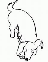 Dog Coloring Dachshund Pages Weiner Wiener Cartoon Clipart Drawing Easy Printable Clip Sketch Library Dachsunds Cliparts Template Daschund Licks Getcolorings sketch template