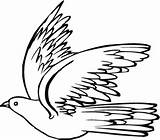 Pigeon Coloring Drawing Dove Colouring Printable Template Flying sketch template