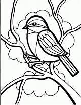 Coloring Sparrow Printable sketch template