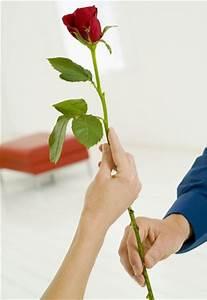 1 Rote Rose Bedeutung : rote rose leidenschaftliche liebe blumen bedeutung gofeminin ~ Whattoseeinmadrid.com Haus und Dekorationen