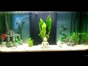 Deco Aquarium Zen : aquarium decoration zen canin attitude ~ Melissatoandfro.com Idées de Décoration