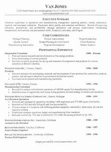 Consultant Resume Example Sample Consultanting Resumes