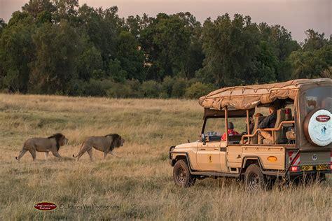 nairobi day trips africa safari vehicles gamewatchers