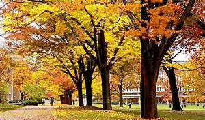 Become a Local in No Time Flat: 48 Hours in Ithaca, New York