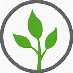 Vegetarian Icon Vegan Natural Organic Labels Label